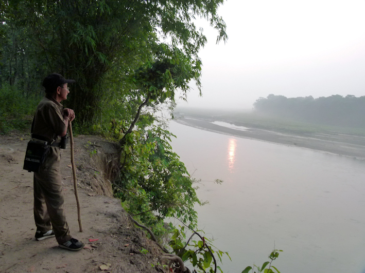 vor der Begegnung mit dem Tiger am Rapti River