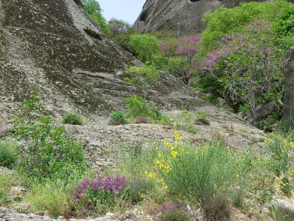 Meteora - Wanderung durch eine mystische Felsenlandschaft