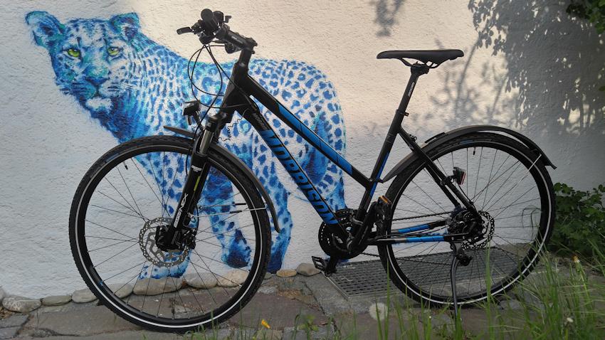 das Rennrad und die Freiheit