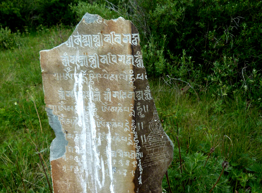 Allein in der Mongolei: Gefährliche Begegnung - 8.Tag