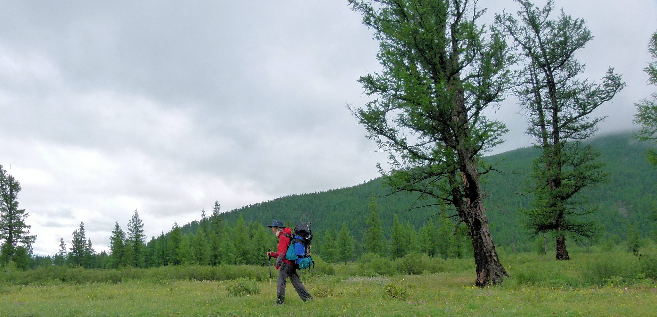 Allein in der Mongolei: Wunder-Wiesen-Welt am 9.Tag
