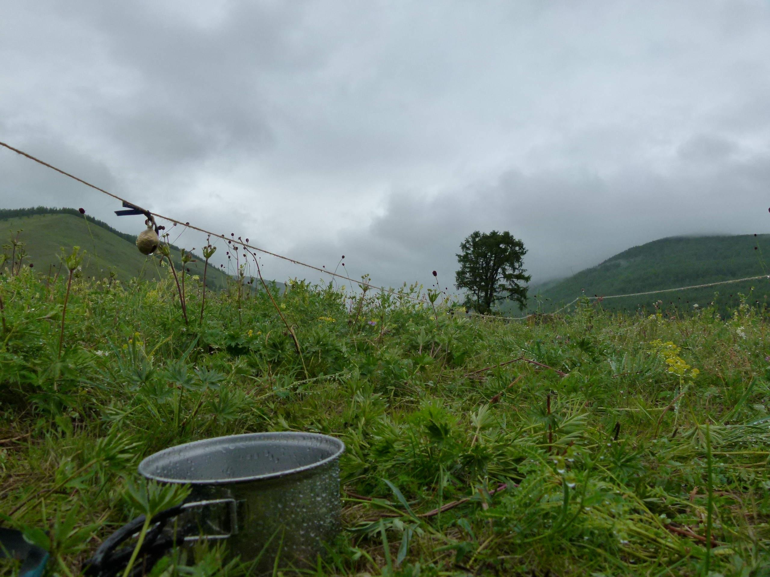 Allein in der Mongolei: und immer wieder Regen