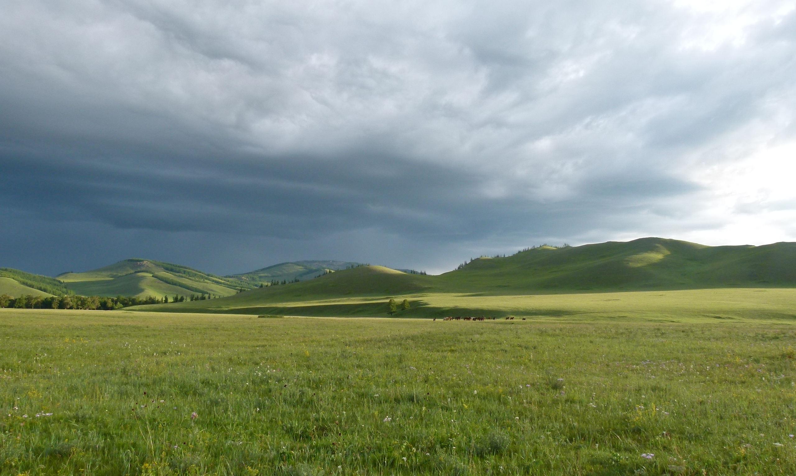 Allein in der Mongolei: Reiter im Regen - 10.Tag