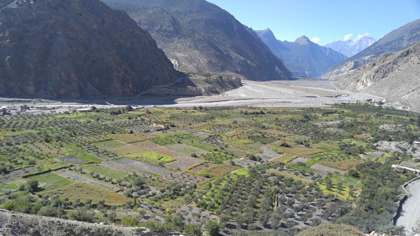 Mustang und Nepal: Trekking-Etappe Marpha