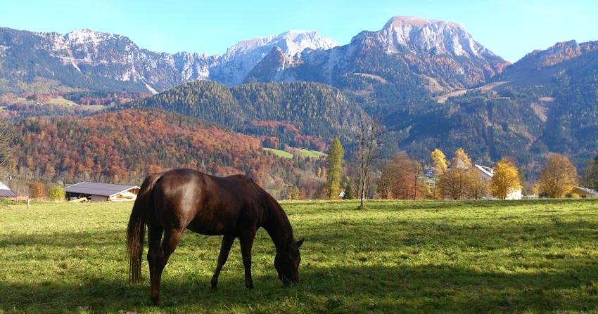 Klettersteig – ohne Auto: Grünstein am Königssee