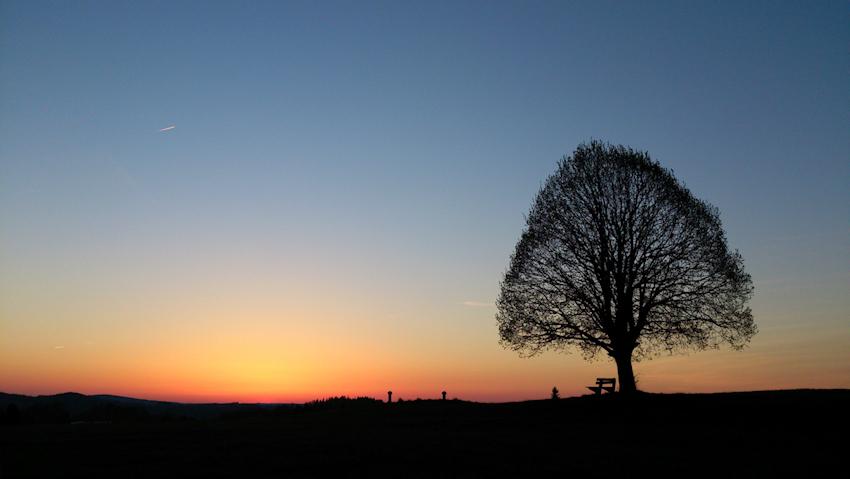 Alleingelassen – Trauer-Bewältigung bei Verlust oder Trennung