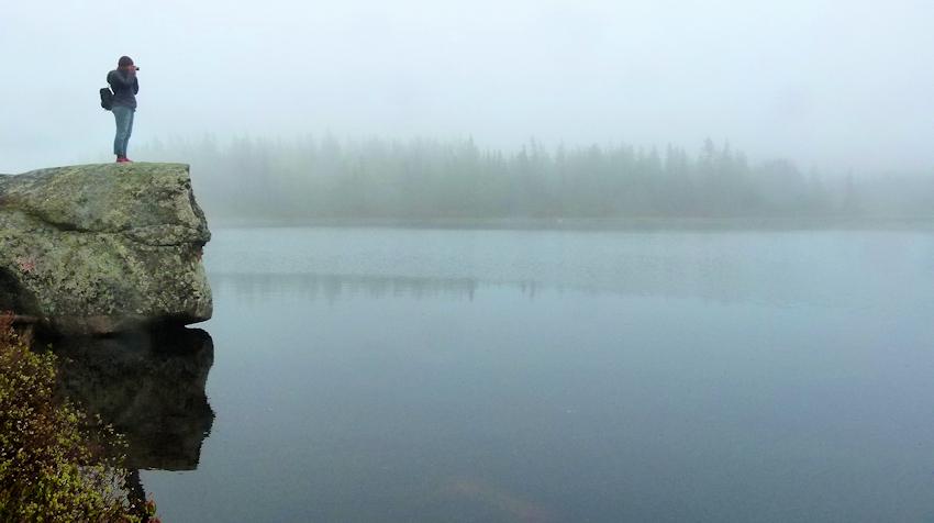 Neufundland: Eule, Wasserfall und Nebel am Cape Breton