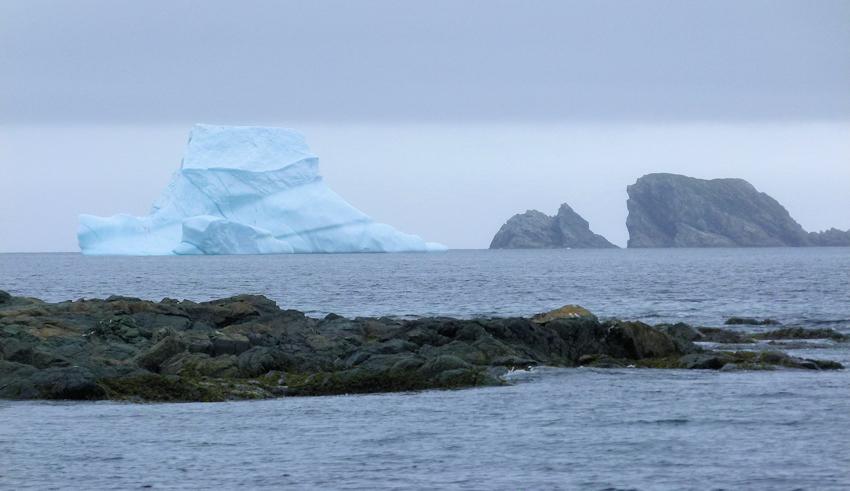 Neufundland: Crow Head und die ersten Eisberge