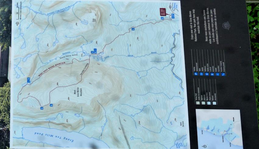 Neufundland: Gipfelglück mit Elchen am Gros Morne