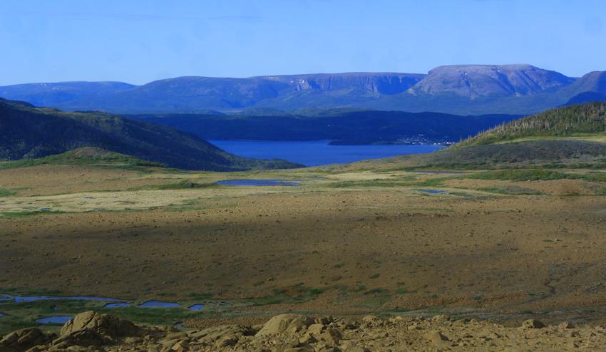 Neufundland: die gelbe Mondlandschaft der Tablelands