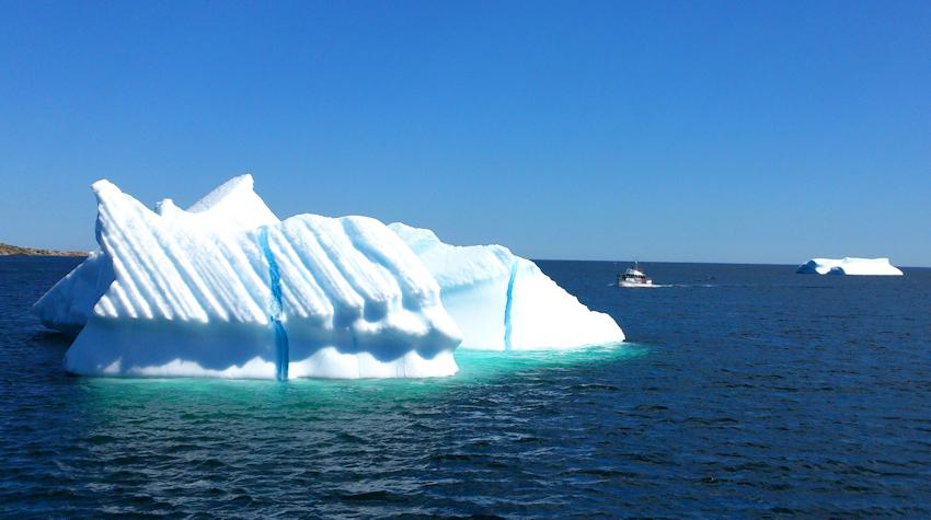 Neufundland: Twillingate an der Iceberg Alley