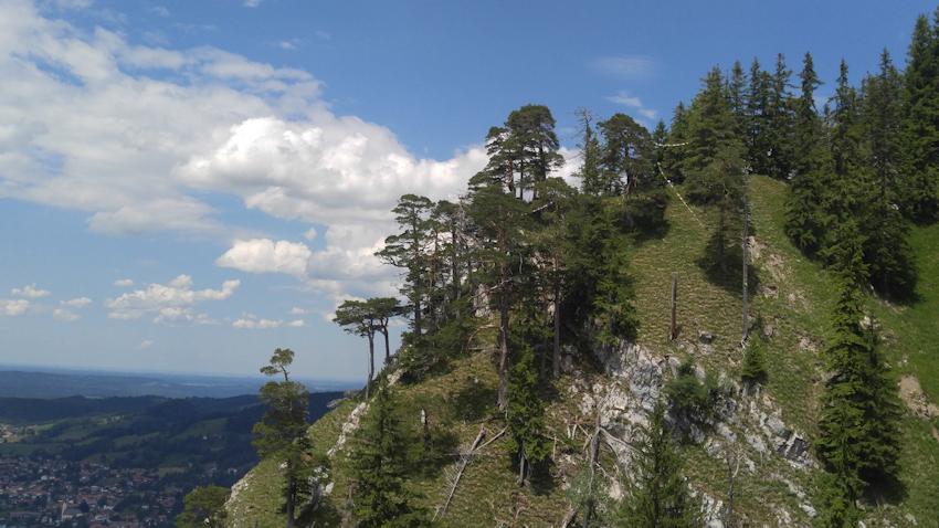 Felsen Bäume und blauer Himmel über dem Schliersee