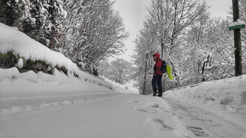 Rodeln ohne Auto: Rodelbahn vom Hocheck bei Oberaudorf