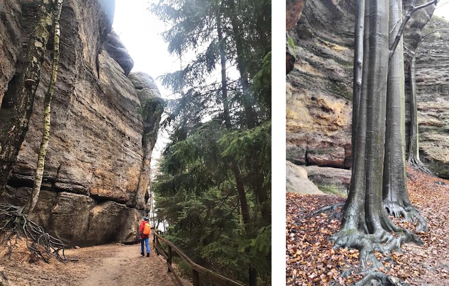 Winterwanderung zum Prebischtor: Juwel der Böhmischen Schweiz
