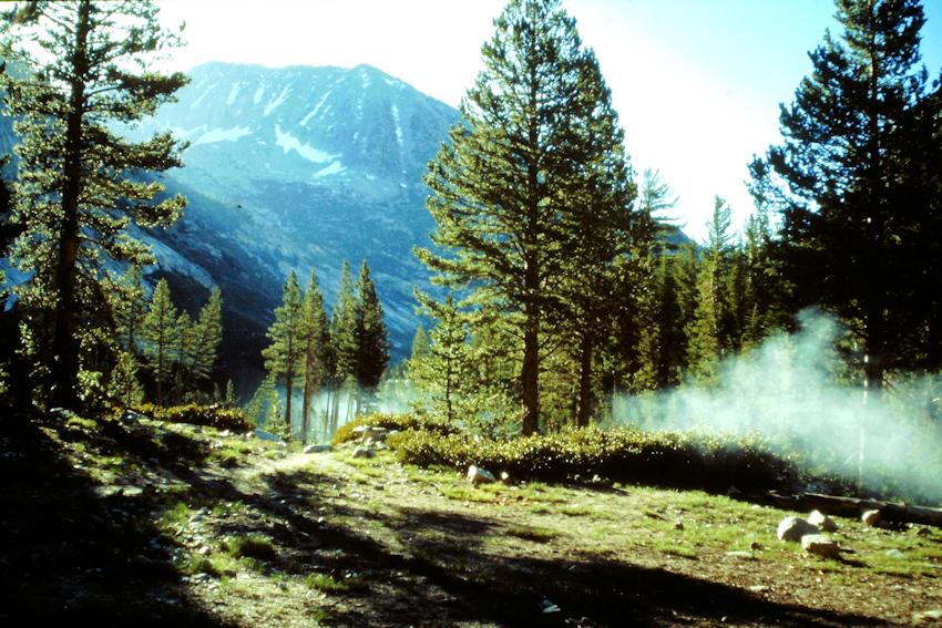 PACIFIC CREST TRAIL: ungefährliche Begegnungen
