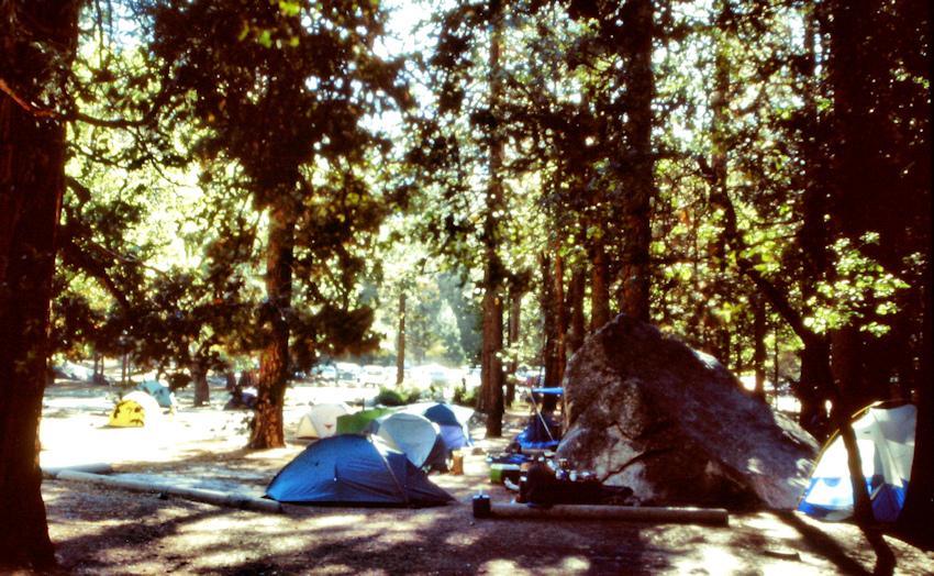 KALIFORNIEN: Klettern im Yosemite Granit