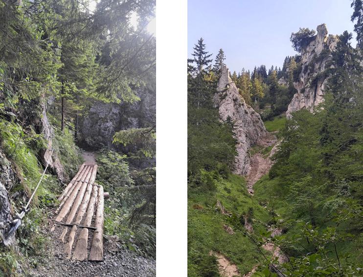 Panoramaweg Königssteig vom Kofel zum Kolbensattel