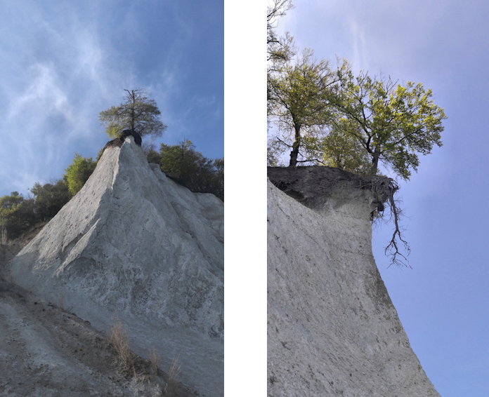 Wanderung: Zu den berühmten Kreidefelsen auf Rügen