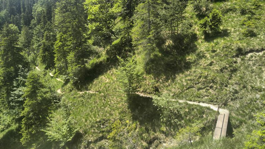 Abstieg von der Staffelalm am Rabenkopf