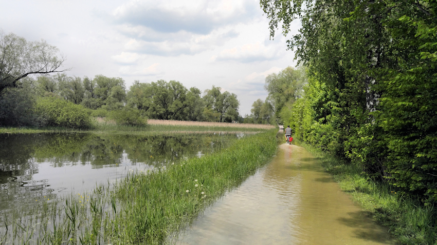 Chiemsee-Fahrradtour: Abenteuer Hochwasser