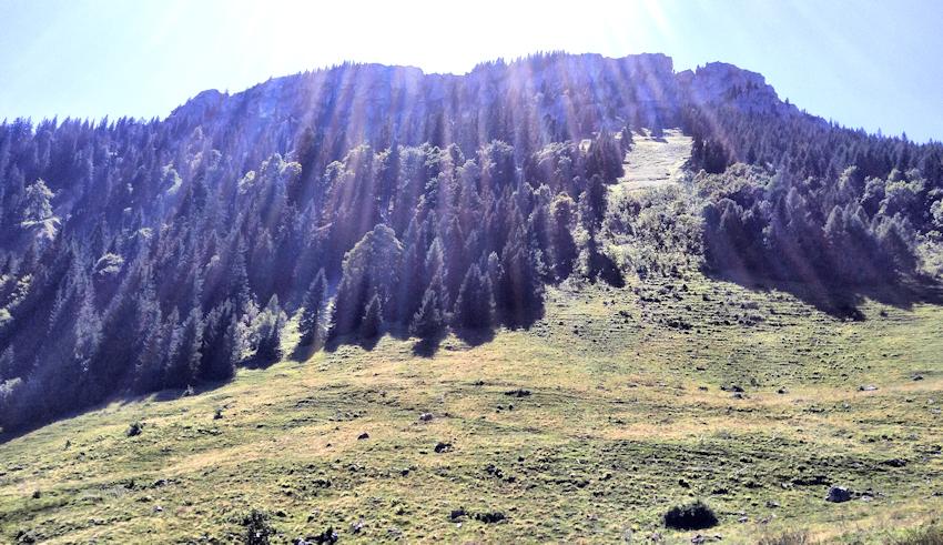 Der felsige Gipfelaufbau des Brünnstein von der Groß Alm