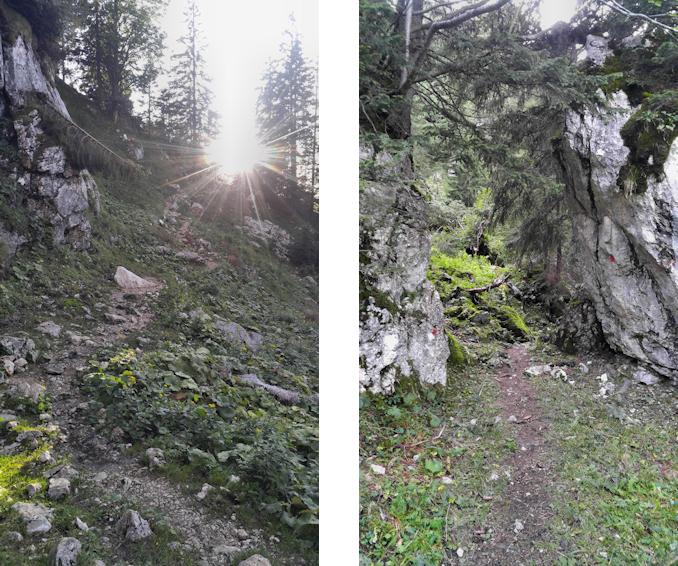 Weg zu Elbach Alm und Kirchwand