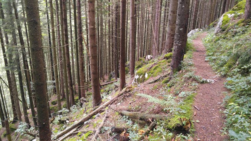 Weg von den Breitenberghütte nach Aipl