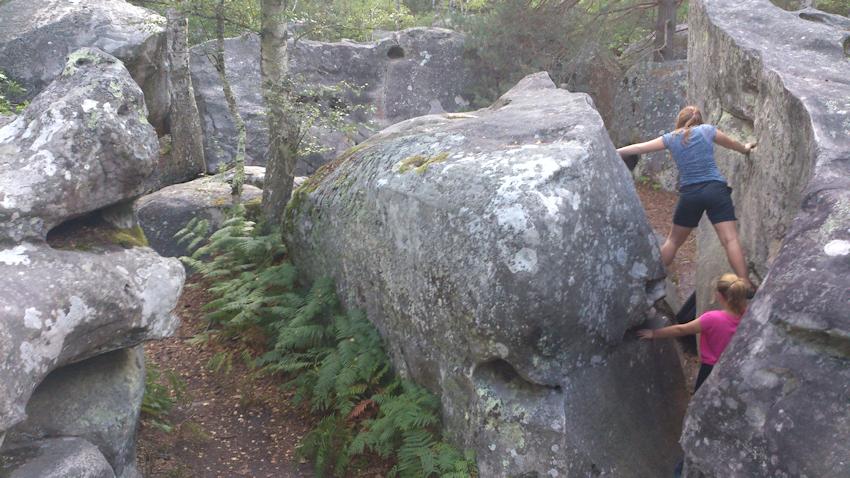 Boulder von Canche aux Merciers nahe Fontainebleau