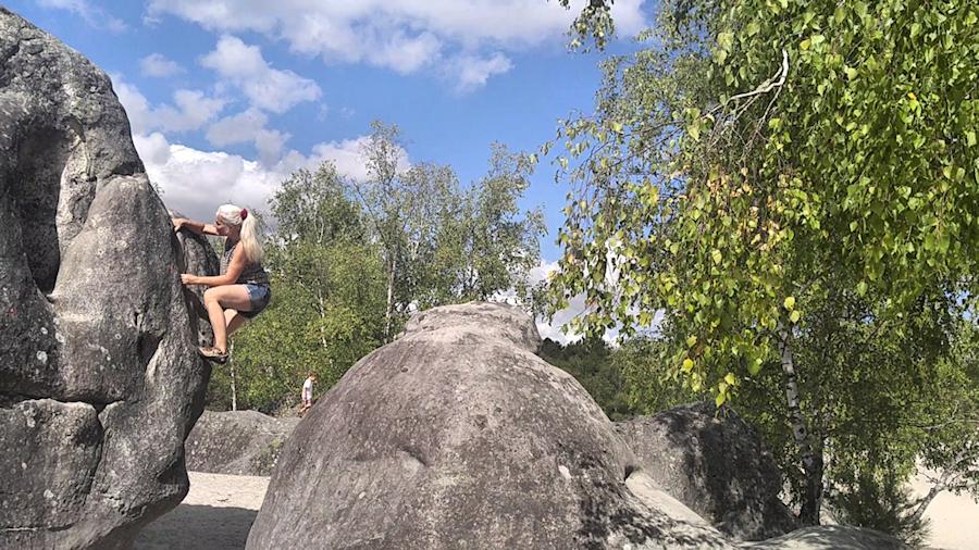 Boulder in Cul de Chien im Wald von Fontainebleau