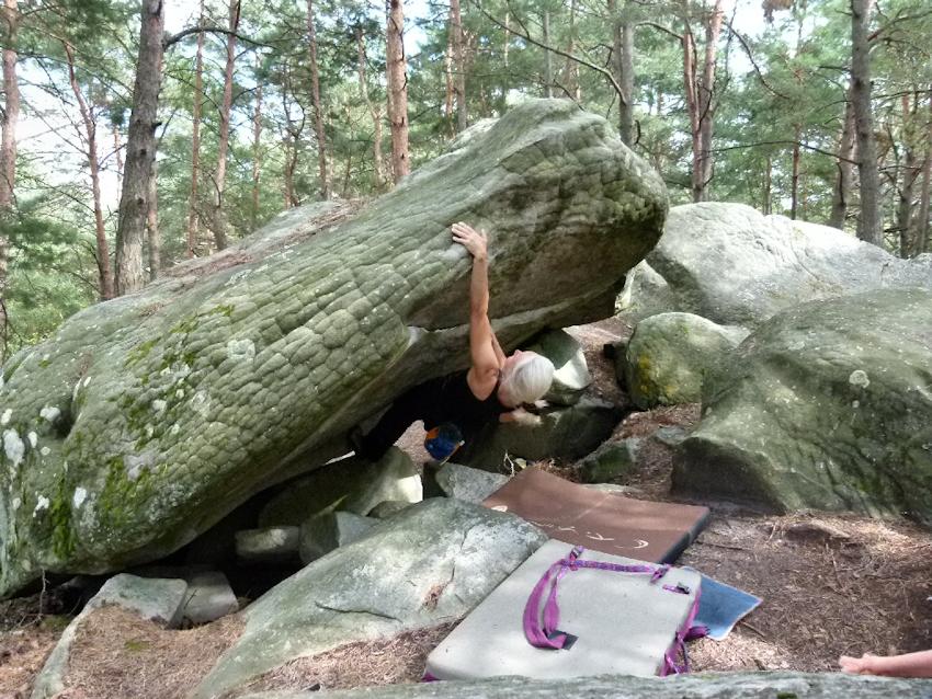 Franchard Isatis Fontainebleau Boulder