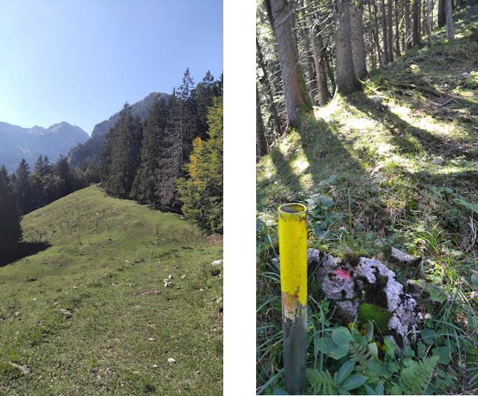 Wanderung ohne Auto: einsame spannende Wege zur Hochsalwand