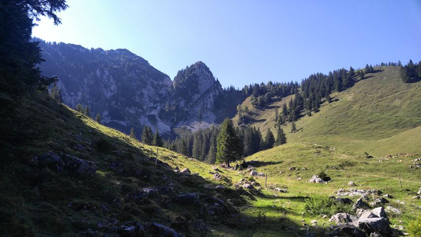 Lechneralm mit Hochsalwand und Lechnerkopf im Hintergrund