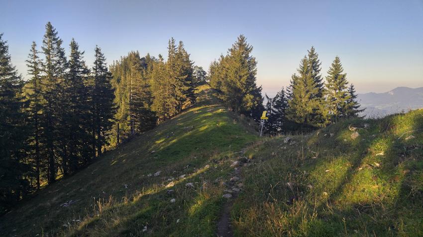 Abstieg von Hochsalwand und Lechnerkopf