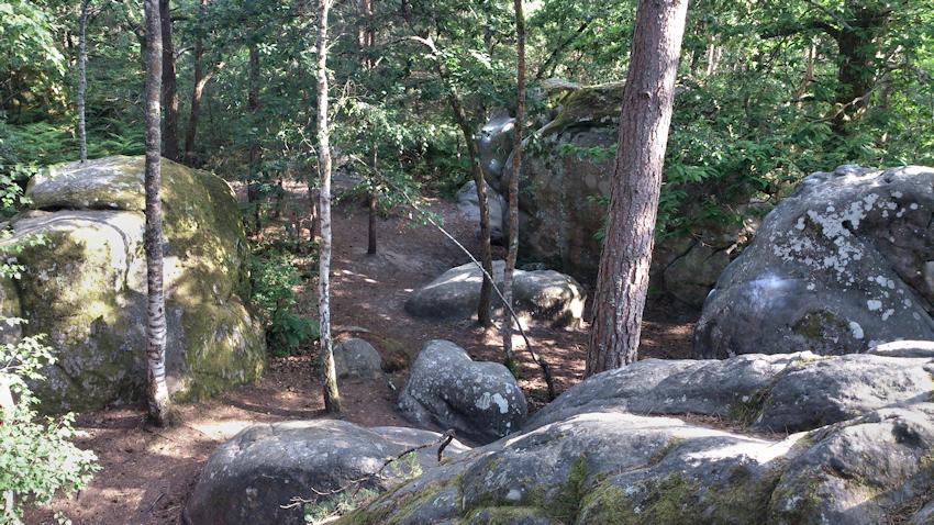 Fontainebleau Rocher Guichot
