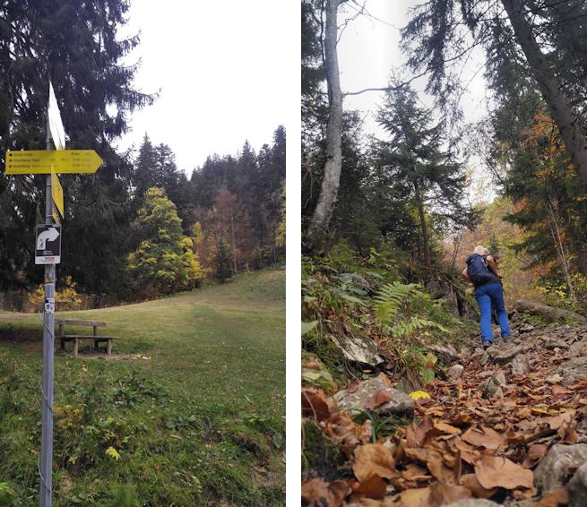 Aufstieg zum Leonhardstein
