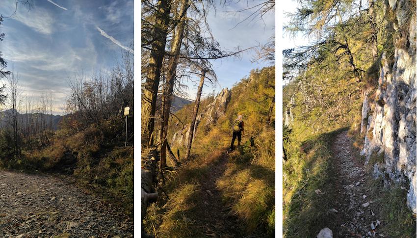 Abstieg vom Rauschberg