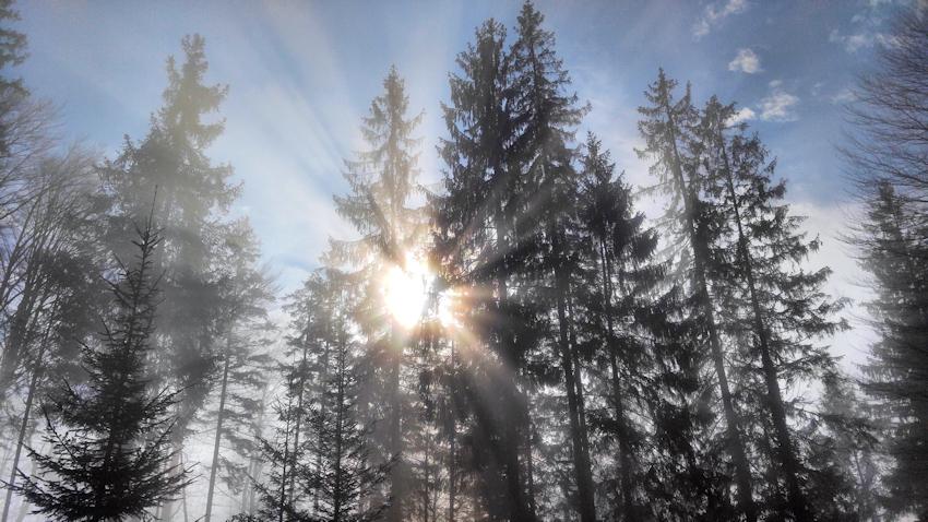 Sonne bricht durch den Nebel