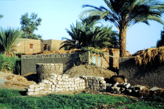 Besuch bei Einheimischen in einem malerischen Dorf