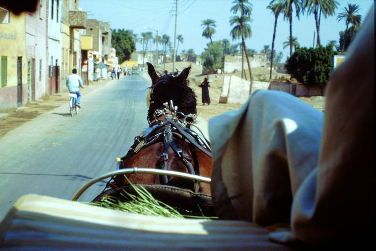 mit der Droschke in Luxor unterwegs