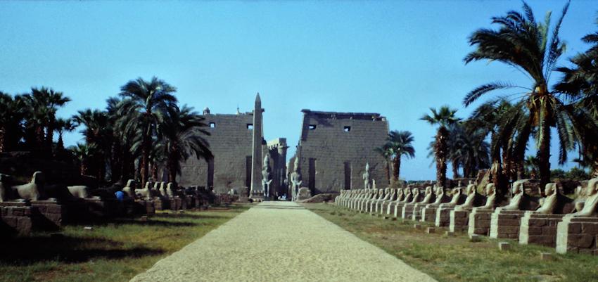 Die Sphinxallee vor dem Luxor Tempel