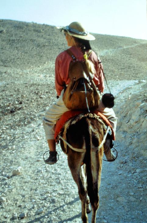 Abenteuer Ägypten: auf Eseln ins Tal der Könige