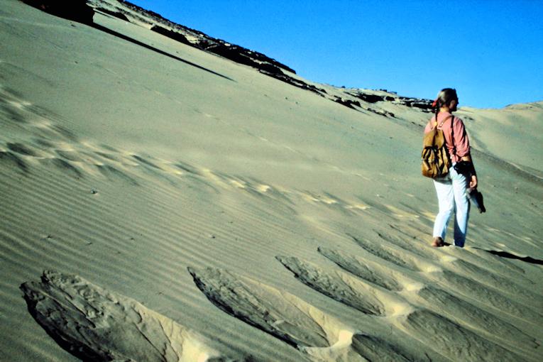 Abenteuer Ägypten: Erste Wanderung in die Wüste