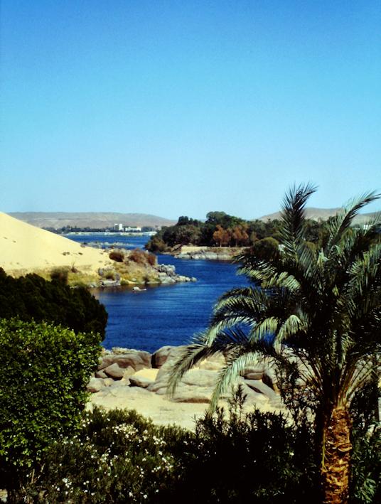 Nil, Palmen und Wüste