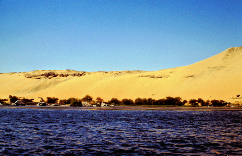 Nilufer bei Elephantine