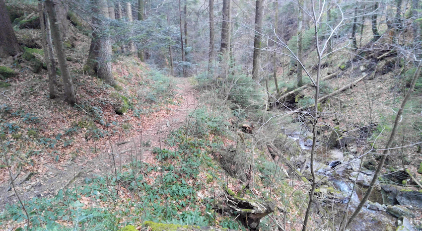 am Kirchbach entlang nach Sagbruck