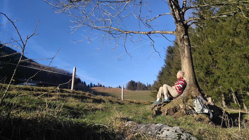 Alm vorm Berggasthof Schweinsteig