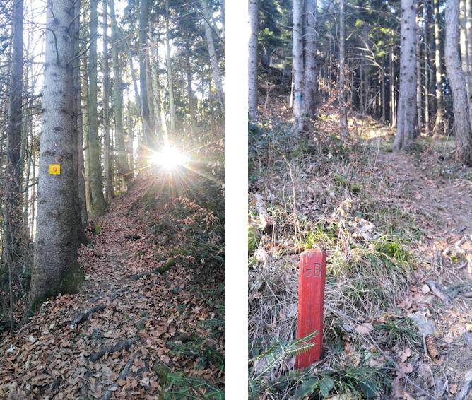 Einsame Pfade den Sulzberg hinauf