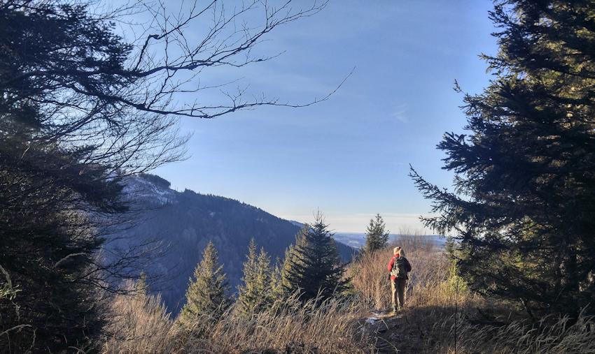 Abstieg über zweiten Sulzberg-Gipfel