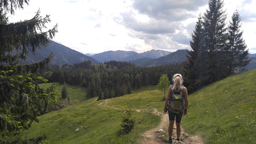 Wanderung ohne Auto: Adler an Wildalpjoch und Kaserwand