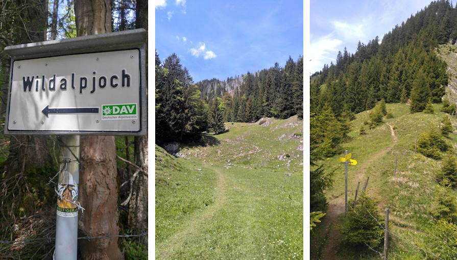 Aufstieg zu Wildalpjoch und Kasererwand